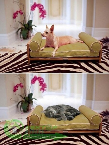 диван для животных своими руками